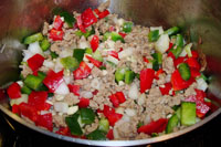 Turkey and vegetable mixture.
