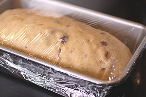 Cranberry Nut Yeast Bread My Kitchen Addiction