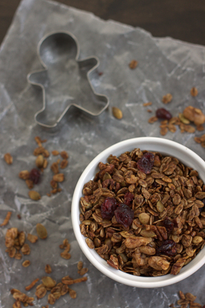 2013-11-15_GingerbreadGranola-4